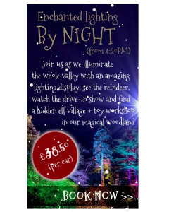 Enchanted lighting By Night